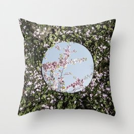 Reflections, Six Throw Pillow