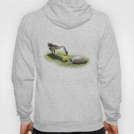 The Turtle and the Goose Hoody
