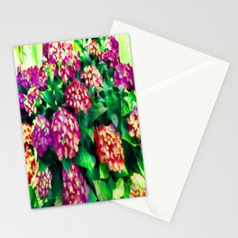 Garden Hydrangea - Raspberry Pink and Lavender Stationery Cards