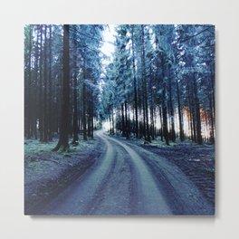 Black forest Metal Print