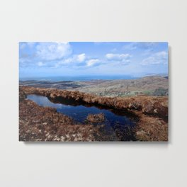 Sheep's Head Metal Print