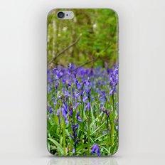 Bluebells Wood iPhone & iPod Skin