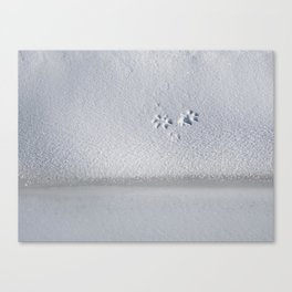 Where is Mr. Fox?, maybe next to the frozen Creek Canvas Print