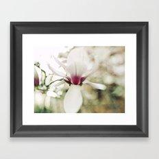 magnolia III Framed Art Print