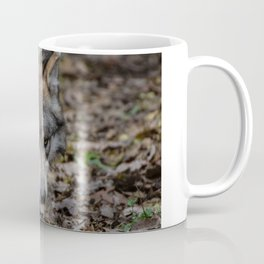 Mexican Gray Wolf Coffee Mug