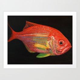 Golden Snapper Art Print