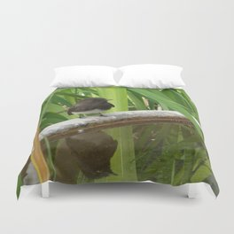Black Phoebe at the Fountain Duvet Cover