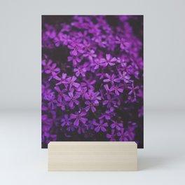 Purple Blossoms Mini Art Print