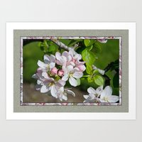will ferrell Art Prints featuring APPLE BLOSSOM by Alpine Seaside Landscapes