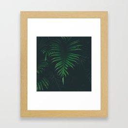 Amazonia Framed Art Print