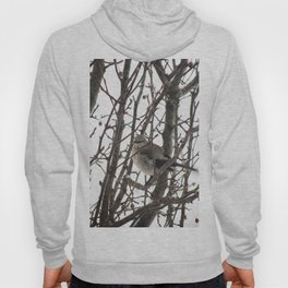 Bird in the Snow Hoody