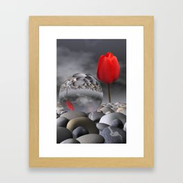 tulip, pebbles and breaking light Framed Art Print