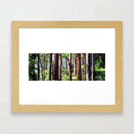 Australian Native Coastal Rainforest Framed Art Print