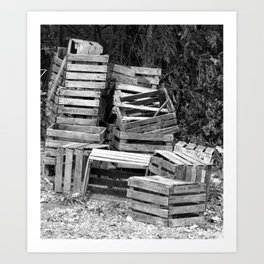 Apple Crates Stacked Art Print