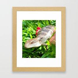 Interspecies Friendship Framed Art Print
