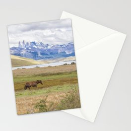 Torres del Paine - Wild Horses Stationery Cards