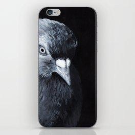 Noah's Ark Collection :: Pigeon iPhone Skin
