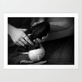 Ballet Slipper Art Print