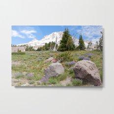 Mount Hood and Lupine Metal Print