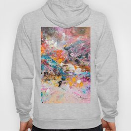 ILLUSIVE MOUNTAINS Hoody