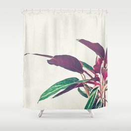 Prayer Plant II Shower Curtain