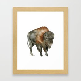 American Bison 2 Watercolor Painting Framed Art Print