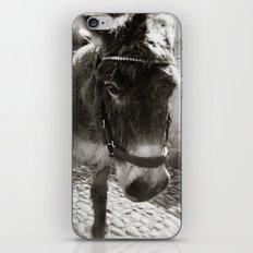 { cobblestone trooper } iPhone & iPod Skin
