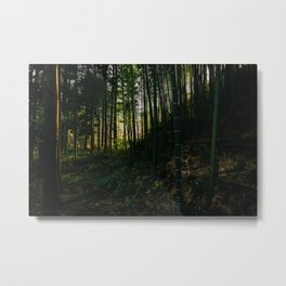 Kiso Valley Shadows Metal Print