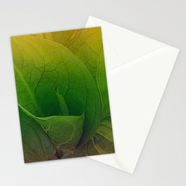 Partridge Plant Stationery Cards