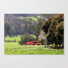Highlands Homestead Canvas Print