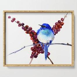 Bird Blue red , Mountain Bluebird adn berries Serving Tray