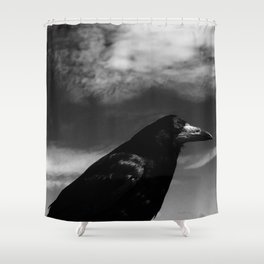 Raven Portrait at the Cliffs of Moher Shower Curtain