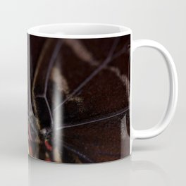 Macro shot of morpho butterfly sitting on orange and eating Coffee Mug