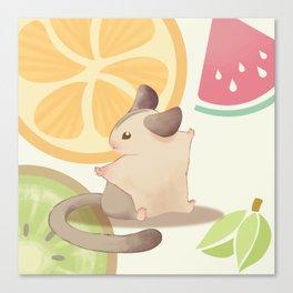 summer fresh fruit Canvas Print