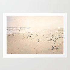 Bird Beach Art Print