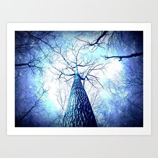 Winter's Coming : Wintry Trees Galaxy Skies Art Print