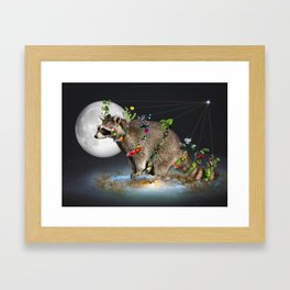 Mapache Framed Art Print
