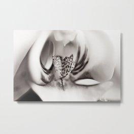 Orchid Closeup II Metal Print