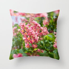 Aesculus red blossom cluster Throw Pillow