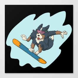 Bernese mountain dog on snowboard Canvas Print