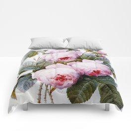 Vintage Roses Comforters