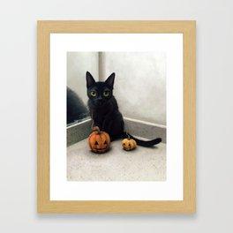 Captain Pumpkin Framed Art Print