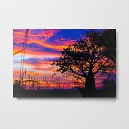 Pinks n Purples thru Boab Tree Metal Print