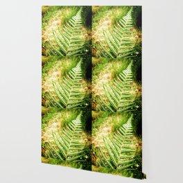 Green Fern Wallpaper