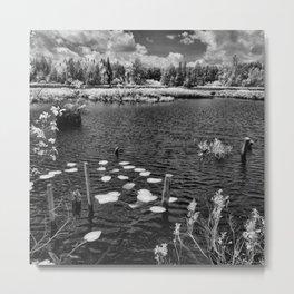 Landscape Estrie Metal Print