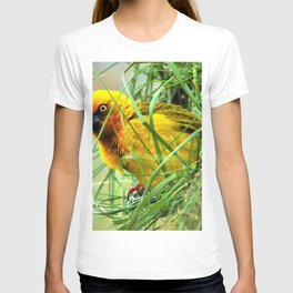 Amazing Lovely Little Feathered Creature In Greenery Zoom UHD T-shirt