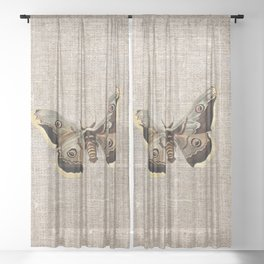 Vintage Moth Sheer Curtain