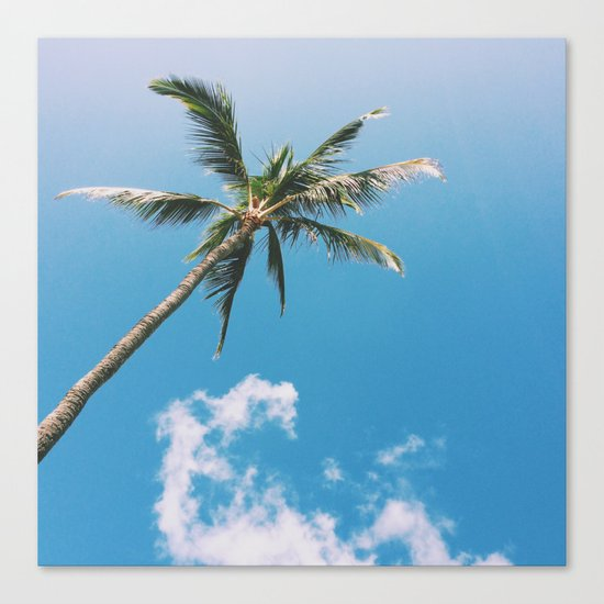 Clouds and Palms  Canvas Print