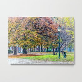 Park in the center of Turin in the autumn Metal Print