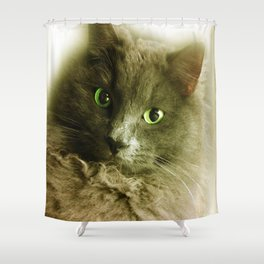 Wake up! Time to feed the Cat! Shower Curtain